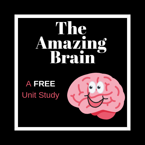 The Amazing Brain